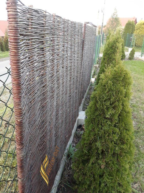 Prútený plot