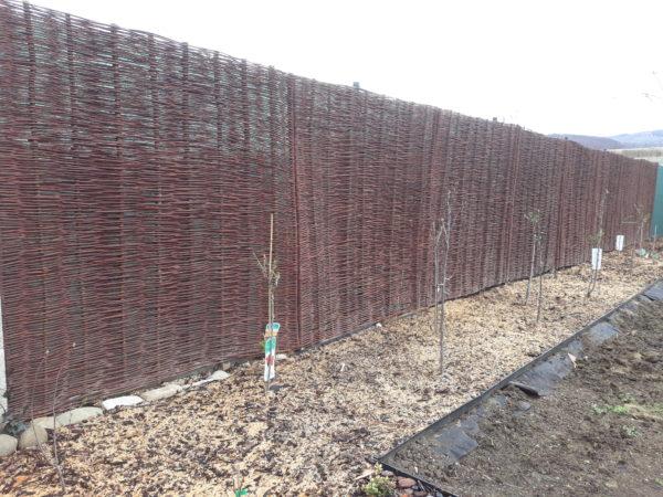 Prútené ploty