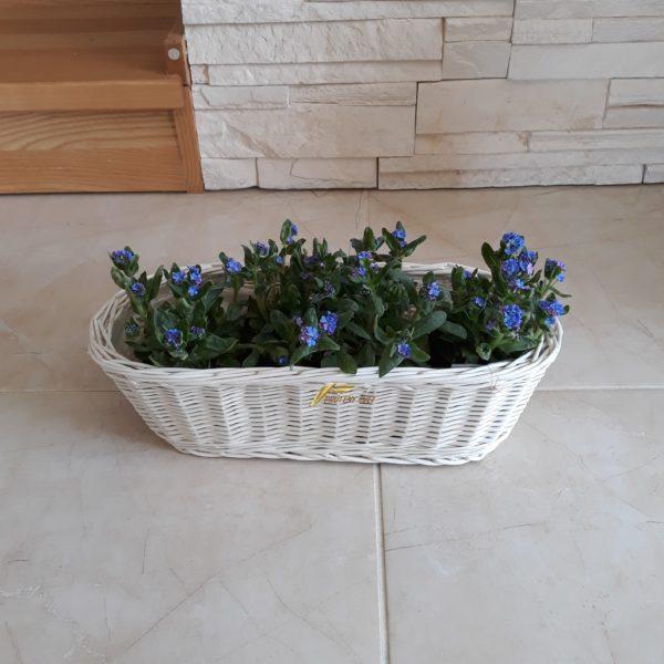 biely prútený kôš na kvety, kvetináč